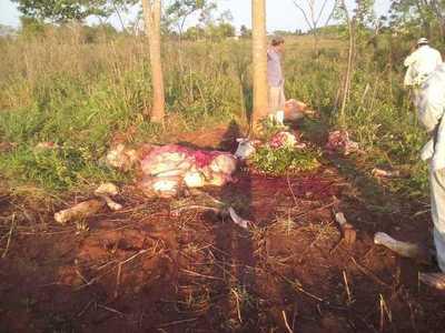 Abigeos golpean en distrito de Belén