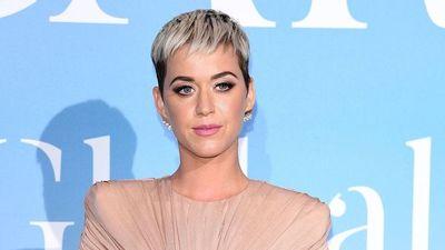 Katy Perry se retira por tiempo indefinido