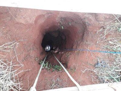 Salvan a un perro que cayó a un pozo de casi 100 metros de profundidad