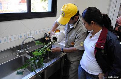 Recomiendan no bajar la guardia contra el dengue