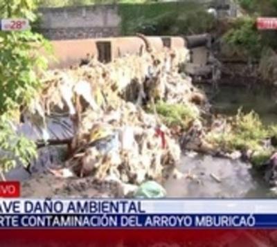 Arroyo Mburicaó es sinónimo de contaminación e insoportable olor