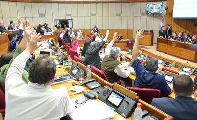 Cámara de Senadores aprueba la creación de MITIC