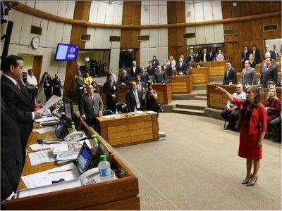 Diputados: Carmen Giménez juró en reemplazo de Freddy D'Ecclesiis