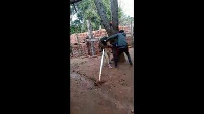 Argentina: Estremecedor vídeo de una mujer golpeada por su marido en Oberá
