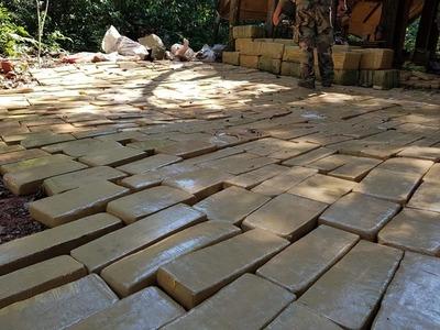 Senad desmantela campamentos narcos y decomisa más de 10 toneladas de marihuana