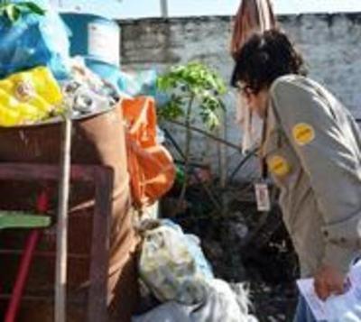 Preocupan altos índices de infestación larvaria en Alto Paraná
