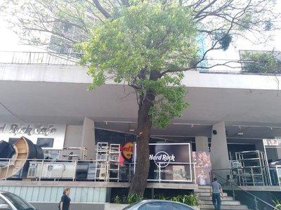El Hard Rock Café de Asunción se muda, no fue desalojado
