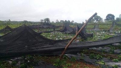 Cultivos fueron destruidos por un temporal en Oviedo