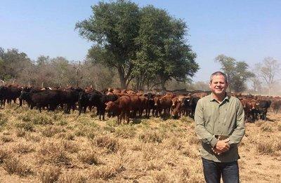 Recaudan US$ 600.000 por mes con vacas de Messer