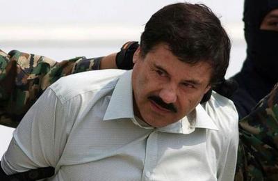 La comparación que grafica las toneladas de cocaína que el Chapo ingresó a EE.UU.