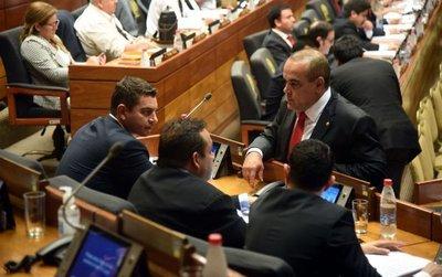 Autoblindaje parlamentario: aún se puede rever el proyecto