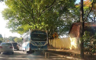 """Buses """"chatarras"""" de Ciudad Jardín dejan a pie a sus pasajeros"""