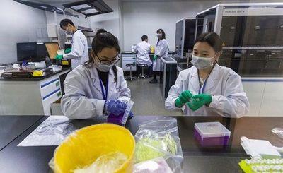 Ordenan una investigación tras nacimiento de bebés modificados genéticamente