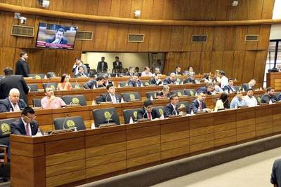 Diputados aprueban por amplia mayoría la intervención de CDE