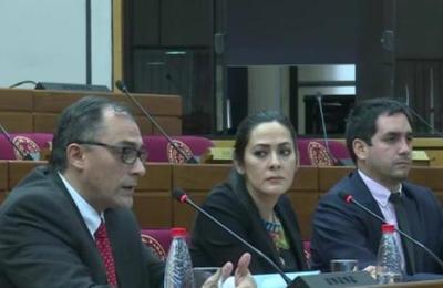 Una Comisión Bicameral investiga el caso Messer