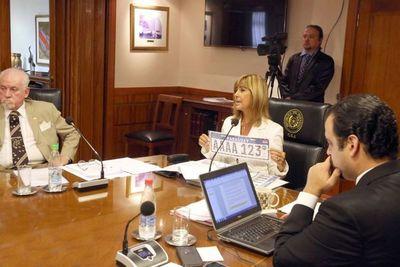 DRA informa a ministros sobre patente del Mercosur