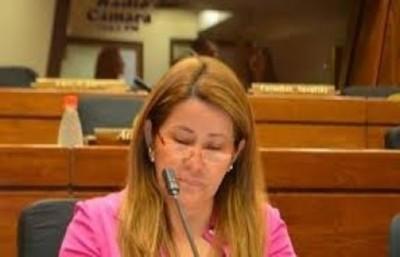 """""""Friedmann no votó, no fue proclamado, no juró, Cartes no puede a ..."""