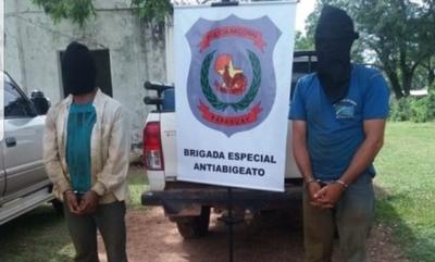 Dos personas son detenidas por talar árboles