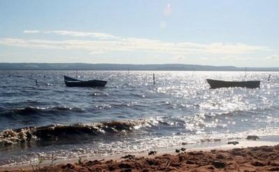 Alta contaminación de coliformes fecales en playas de San Ber y Areguá