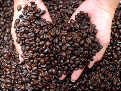 Las especies de café silvestre están amenazadas por el cambio climático