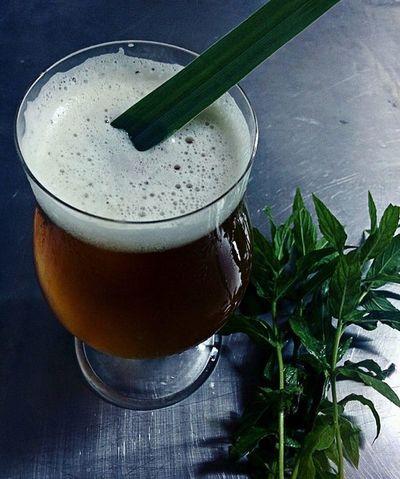 Utilizan cedrón y menta'i para diferenciar a la cerveza artesanal local