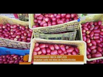 Incautan 7.000 Kg. de frutihorticolas de contrabando