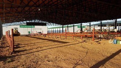 El sector ganadero comienza preparativos en el predio de la Expo Pioneros