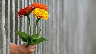 Combatir el bullying con amor es la propuesta de Sprite en esta nueva campaña