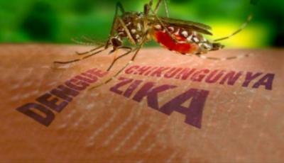 se registró leve aumento en casos de Dengue, Chikungunya e Zika