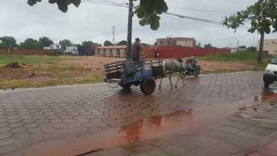 Mansa lluvia aplaca intenso calor en Concepción