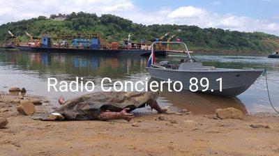 Hallan cadáver en aguas del Paraná