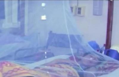 Han confirmado al menos 100 casos de dengue en lo que va de año