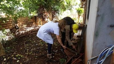 Instan a la ciudadanía a luchar contra el dengue en Alto Paraná