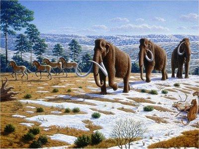 Humanos jugaron un rol en extinciones del Pleistoceno