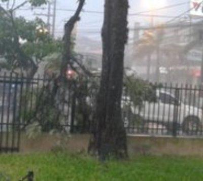 Temporal causa destrozos en ciudades de Ñeembucú