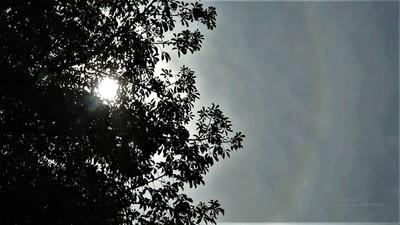 Se pronostica una jornada cálida y con lluvias