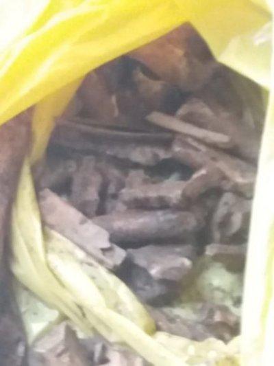 Hallan restos óseos en una escuela de San Ignacio