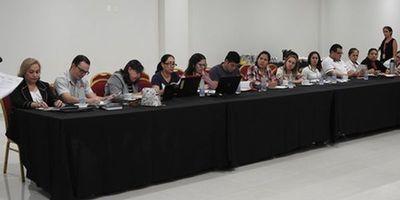 Dengue: Fortalecerán controles en la Triple Frontera