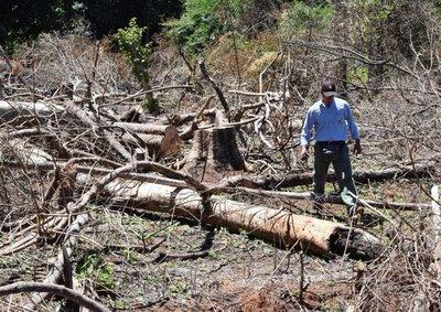 Actividades en la UNA por el día internacional de los bosques