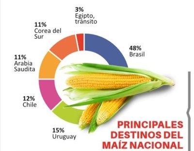 Exportaciones de maíz se retraen 17%