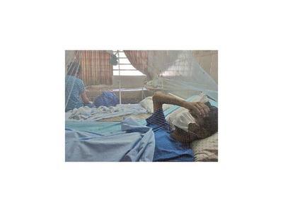 Salud estudia un caso de supuesta muerte  a causa de dengue grave
