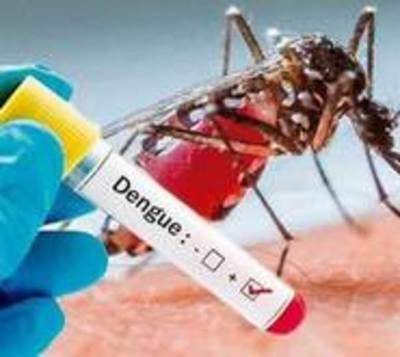 Se disparan casos de dengue: 305 nuevos casos en la última semana