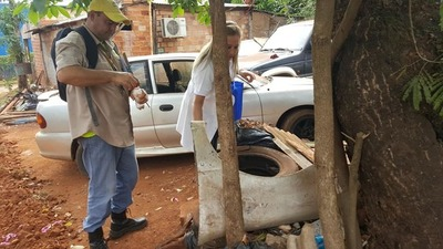 Casos de dengue suben 154% en el Alto Paraná