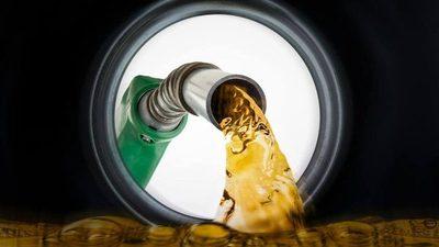 Procesadoras de biodiesel se oponen a ley