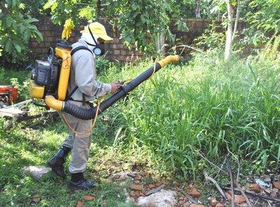 Confirman un caso de dengue en Horqueta