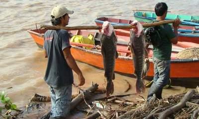 Senacsa confirma que peces del río Paraguay son aptos para el consumo