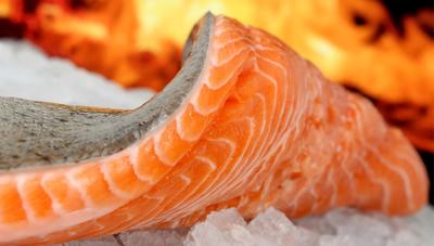 ¿Cómo afecta la mortandad de peces al gremio gastronómico?