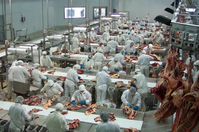 Sostienen que Instituto de la Carne es muy necesario para la ganadería nacional