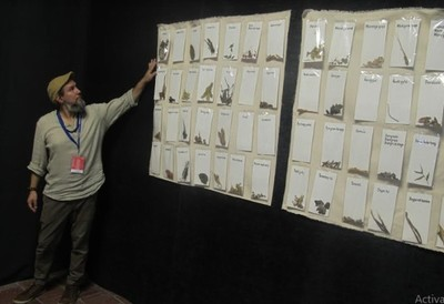 Artista paraguayo presenta obra en Bienal de la Habana