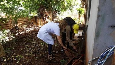 Más de 50 casos de dengue en Franco